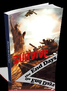 Survive the End Days pdf