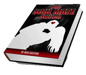 Soul Mate Switch book cover