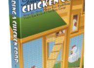 Building A Chicken Coop PDF