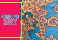 Ironbound PDF